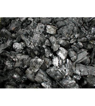 Carbón de Encina